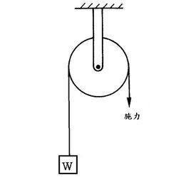 组装定滑轮和动滑轮